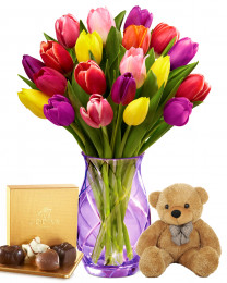 20 Spring Tulips with Teddy and Godiva